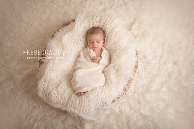 Newborn photographer victoria bc family photography rebecca joy studios